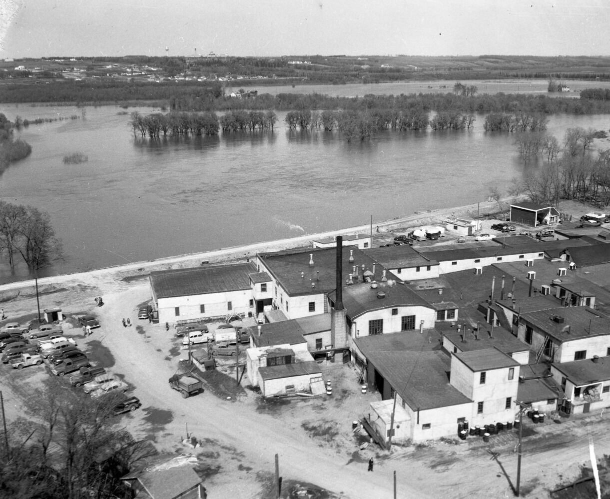 The buildings are safe, but the wide expanse of the Assiniboine River was visible in this photo from the flood of 1954. The picture appears to have been taken from near First Street and Pacific Avenue. Looking north, one can see the Brandon Mental Health Centre buildings near the horizon. (Courtesy CKX fonds, S.J. McKee Archives, Brandon University)