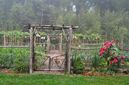 This undated photo shows a garden in New Paltz, N.Y. A sense of order, a welcoming gate, and a well-defined path are among the elements that make this vegetable garden both pretty and functional. (Lee Reich via AP)