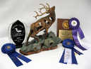 """What's Not Seen"" displayed with its most recent plaques and ribbons awarded at the Prairie Canada Carving Championship including Best of Show and Carver's Choice Award, April 2015 Wpg."