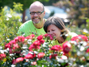 Donna Chandler, nursery manager at the Green Spot, checks over some of the Never Alone roses with owner Bernie Whetter on Wednesday afternoon. One dollar from the sale of each plant goes to the Never Alone foundation, which assists cancer patients and their families.