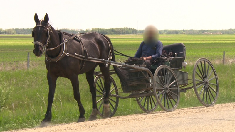 A blurred video still of a member of an Old Order Mennonite colony who confirmed on Wednesday that Manitoba Child and Family Services took dozens of children from their homes last week, following charges of abuse made against four colony members.
