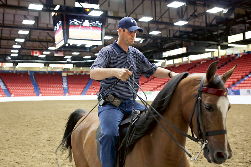 Matt Siemon with Siemon Stables from New Carlisle, Ohio, exercises his pure Arabian horse Teddy in the ring at Westman Place during the first day of the Canadian National Arabian & Half-Arabian Championship Horse Show at the Keystone Centre on Monday afternoon.