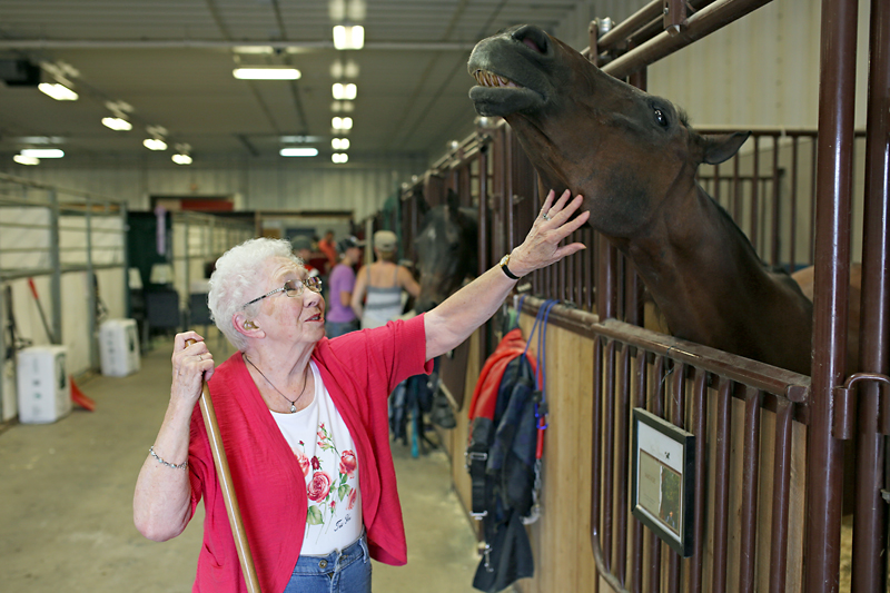 Mina Shaw, 88, of Edmonton scratches the chin of an Arabian horse named Matage while in town to support her daughter and granddaughter showing horses during the first day of the Canadian National Arabian & Half-Arabian Championship Horse Show at the Keystone Centre on Monday afternoon.