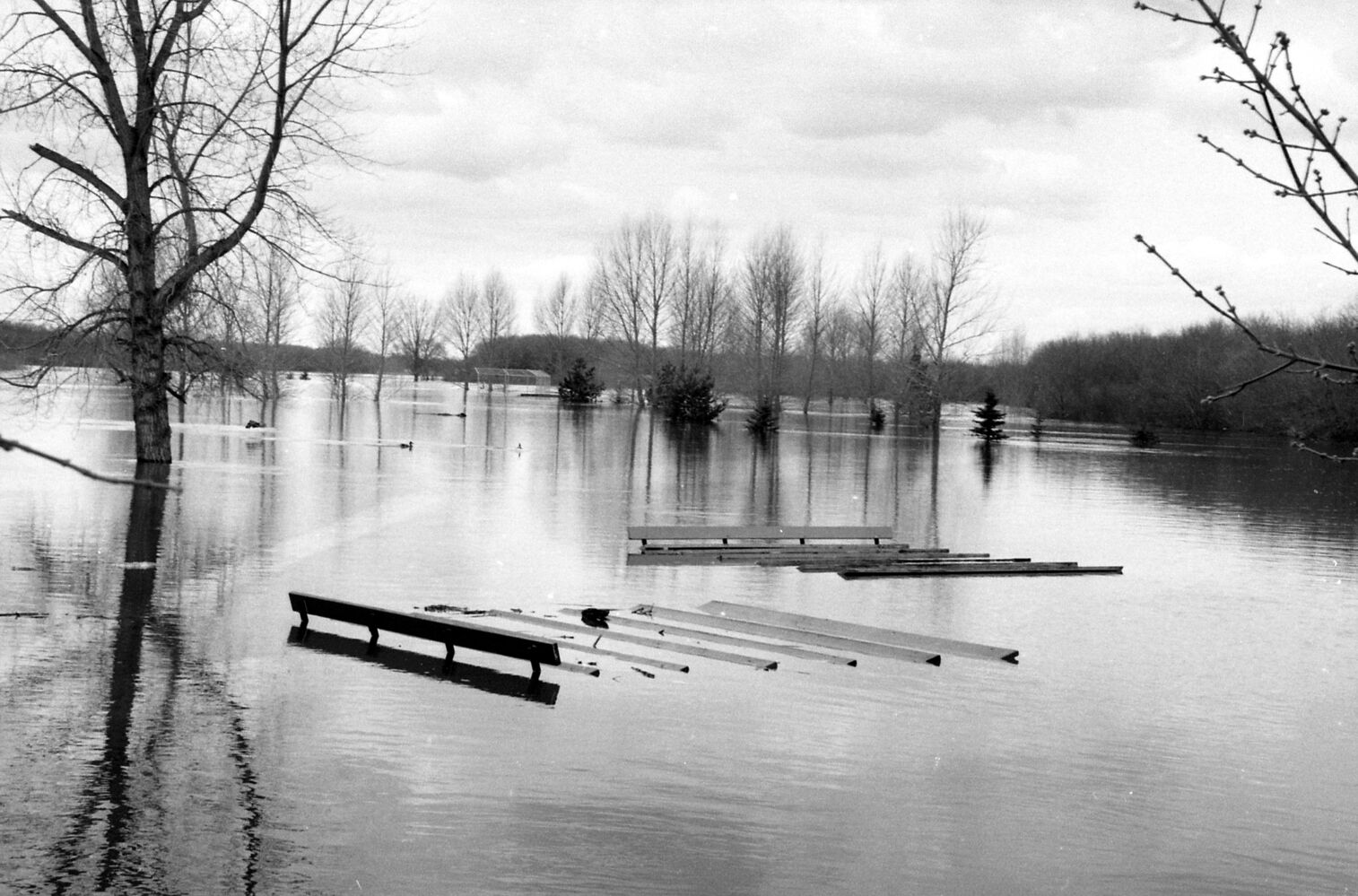 Assiniboine River floodwaters swamp grandstands during the 1995 flooding. Location is probably the Participaction Park, now Pooch Park. (Dirk Aberson / Brandon Sun archives, April 24, 1995)
