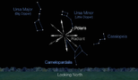 Brand-new meteor shower expected tonight