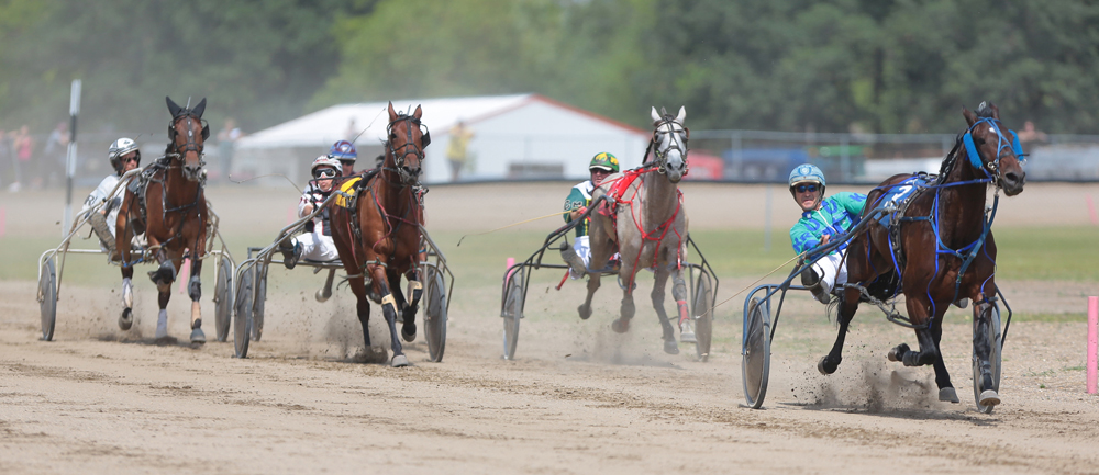 Horses break down the home stretch in the second race at the Little Irish Downs during the 2014 Manitoba Great Western Harness Racing in Killarney. (File)