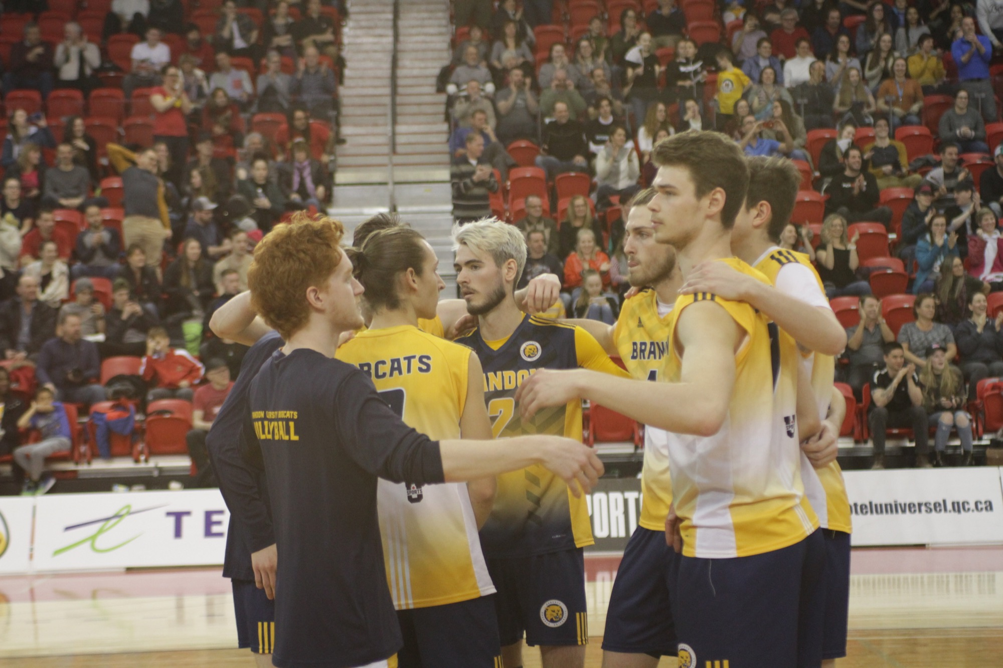 The Brandon University Bobcats huddle after losing to the Trinity Western University Spartans in the U Sports men's volleyball final in Quebec City on Sunday.