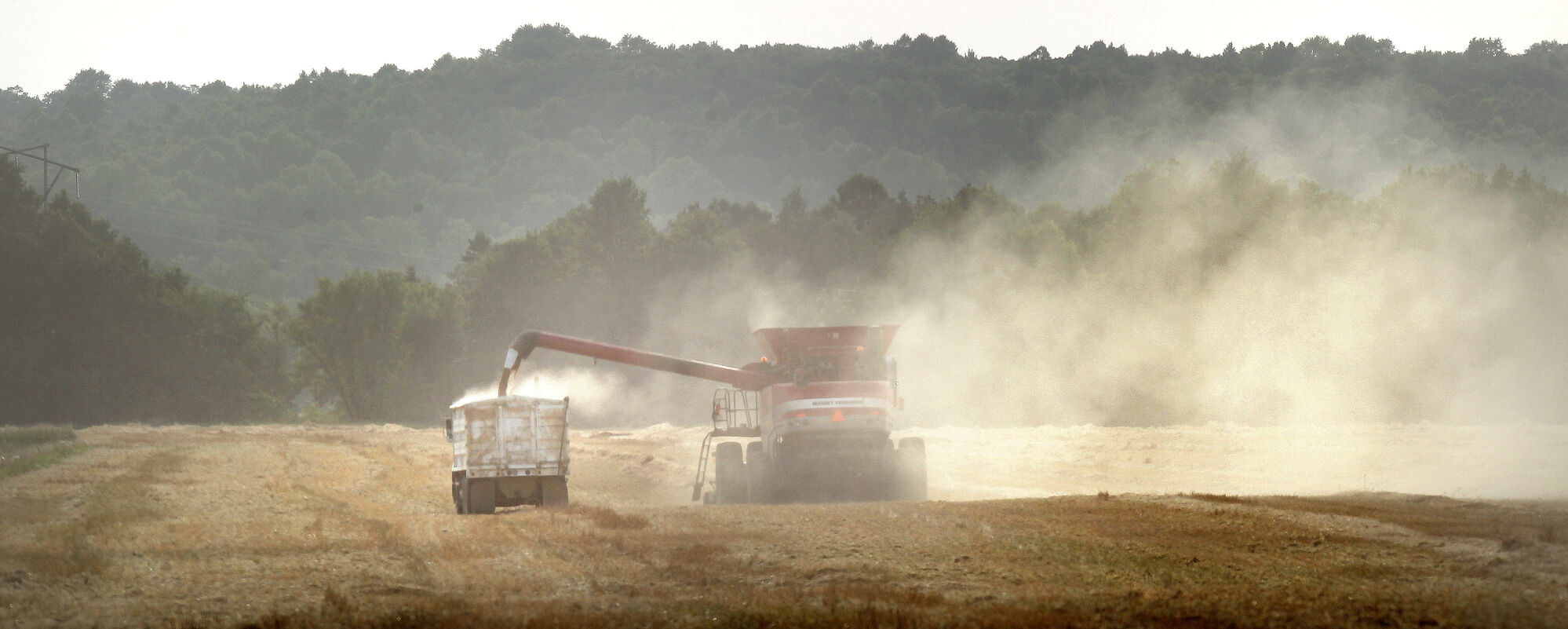 Dust frames a combine against the Manitoba Escarpment near Roseisle, Man. as it dumps grain from it's hopper into a waiting grain truck in August 2013. Grain prices are plummeting as railways can't handle record crops