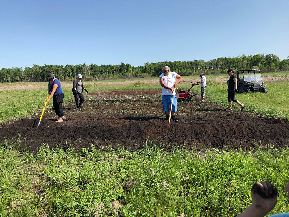 Waywayseecappo residents get the soil ready at the community garden before planting last year. (Submitted)