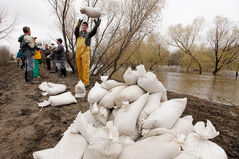 In this May 9, 2011, photo, volunteers sandbag on the southern dike of the Assiniboine River in Brandon.
