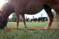 Children ride ponies during New Hope Equine Ministries' pony day camp on Maryland Avenue on Wednesday. The camp is up and running again after Bob and Patti Mazer offered up land for Fran Henderson's summer camp.