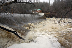 The swollen Birdtail Creek floods portions of Birtle Riverside Park on Saturday afternoon.