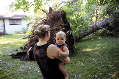 Eleven-month-old Eli Ariss looks back as his mother Erin Corbett surveys a large downed tree in the backyard of her neighbours home on Ninth Street on Sunday morning after a severe thunderstorm wreaked havoc over Brandon on Saturday.