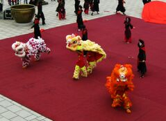 Performance- The Chinese Dragons chase away the Fan Dancers and get ready to perform for the Emperor.