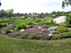 Brenda Evan's garden features an expansive rock garden.