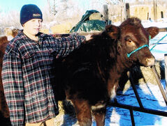 Wyatt Inglis, an 11 year old from Rapid City selected a Shorthorn heifer for his herd builder.