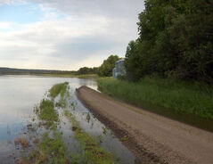 North of Virden, water from the Assiniboine River has caused overland flooding, washing out roads and wiping out crops in the area.