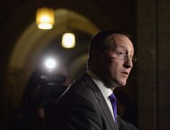 Peter MacKay is pictured in Ottawa on Nov. 25, 2013. THE CANADIAN PRESS/Sean Kilpatrick