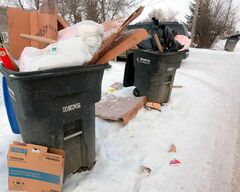 Overflowing garbage bins along a back lane behind MacDonald Avenue on Thursday afternoon.
