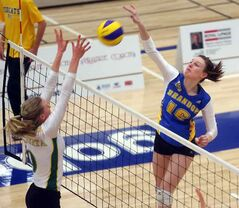 Meaghan Robertson of the Brandon University Bobcats (right) spikes the ball during a volleyball match against the University of Alberta Pandas at the BU Healthy Living Centre on Saturday night.
