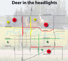 This map shows the worst roads for total number of vehicle-versus-deer crashes in the Brandon area between Jan. 1, 2011, and Nov. 21, 2013, according to Manitoba Public Insurance data provided to Assiniboine Community College land and water management student Justin Petkau. According to the data, there was 806 collision claims in that time in the Brandon area, many of which were marked as unknown locations, likely due to out-of-town drivers not knowing their exact location.