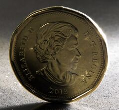 A loonie is pictured in North Vancouver, Dec.31, 2013. THE CANADIAN PRESS/Jonathan Hayward