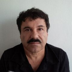 In this image released by Mexico's Attorney General's Office, Saturday, Feb. 22, 2014, Joaquin