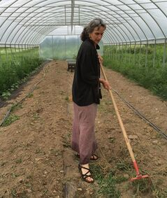 In this Wednesday, July 23, 2014 photo, Joanna Green, director of the Groundswell Center for Local Food and Farming, hoes weeds in the new greenhouse at the center's incubator farm in Ithaca, N.Y. The incubator farm is one of dozens springing up around the country to help would-be farmers learn the trade and develop a market before they invest in their own land and equipment. (AP Photo/Mary Esch)