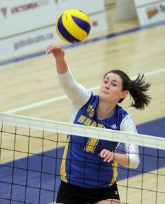 BU's Victoria Dakin hammers the ball in Canada West action versus Mount Royal last season.