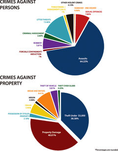 A breakdown of city crime as detailed in the Brandon Police Service's 2013 annual report.