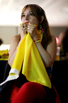 Liliana Molano clutches a Colombian flag during the second half of Friday's match against Brazil.
