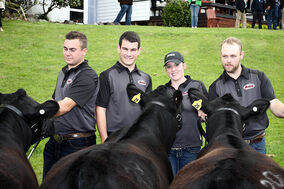 "The world champion ""Canucks"" — Michael Hargrave from Ontario, Patrick Holland from P.E.I., Melissa McRae from Brandon and Jared Hunter from Alberta — pose with their cattle at the PGG Wrightson World Angus Forum and competition in New Zealand."