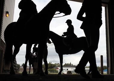 Competitors are silhouetted as they wait to show their horses during the Canadian National Appaloosa Horse Show at the Westoba Agricultural Centre of Excellence on Tuesday.
