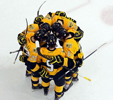 Brandon Wheat Kings players celebrate a goal in Saturday night's 8-3 thrashing of the Regina Pats in Western Hockey League action at Westman Place.