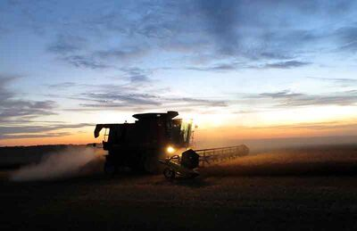 The sun sets on the harvest in Westman as a farmer combines a field of Carberry hard red spring wheat north of Deloraine. The rains came shortly after, dumping up to 80 millimetres on the area.