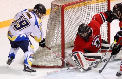 Alisha O'Hara of the Westman Wildcats tries to slip the puck past netminder Halle Oswald of the Pembina Valley Hawks during Game 3 of the Manitoba Female Midget Hockey League final at the Hartney Arena on Sunday afternoon.
