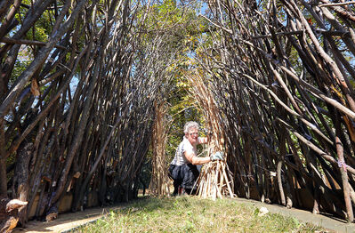 Artist Barb Flemington works on creating a tunnel-way from willows and reeds, similar to arch-like structures that are built by male bowerbirds in Australia, for an interactive art piece that will be part of the Art Gallery of Southwestern Manitoba's Culture Days float in Saturday's parade.