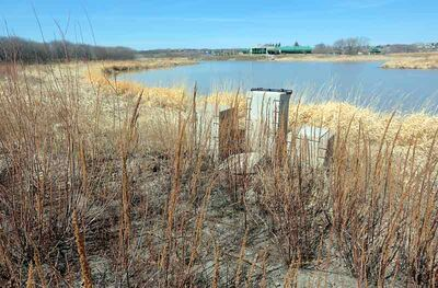 Flood waters washed away much of the gravel pathways which have been overgrown since the flood of 2011.