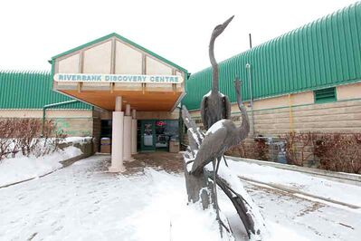 A statue to two herons stand on display in front of the Riverbank Discovery Centre in Brandon on an overcast Monday.