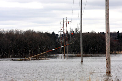 Floodwater from the Assiniboine River knocked over a hydro pole in a field south of Grand Valley Road near 18th Street.
