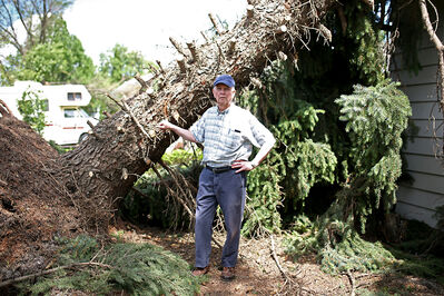 Garry Nicol stands in front of a an evergreen tree on Monday that was uprooted and fell on his house on Sixth Street just north of Aberdeen Avenue during Saturday evening's severe thunderstorm.