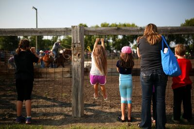Young rodeo fans climb the arena fence for a better look during the Souris and Glenwood Rodeo on Saturday evening.