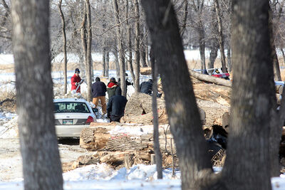 Workers and Brandon police erect a tent near the banks of the Assiniboine River in Queen Elizabeth Park on Wednesday afternoon after human remains were found.