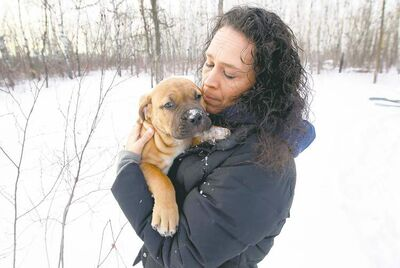 Cathy Brule cuddles Lucas, a bull mastiff pup she got for Christmas. Her dog Bobby went missing in August.