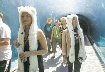 Susan Braun (left) and Jennifer Young wear distinctive polar bear head gear in the tunnel.