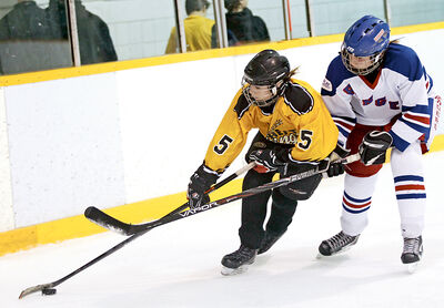 Logan Wallace of the Brandon Female Peewee Wheat Kings carries the puck in a Tournament of Champions game on Feb. 14.