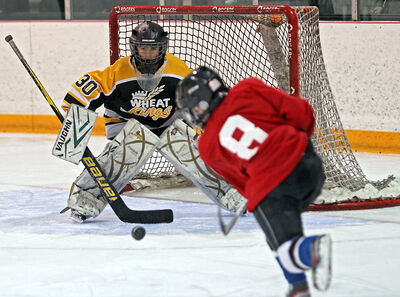 Rands Senecal of Central Plains fires a shot at Brandon Gold goalie Caden Wilson during a Regional Peewee Future Stars Tournament game at the Optimist Arena on Sunday.