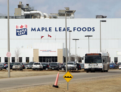 Traffic and workers flow in and out of the Maple Leaf plant, east of the city, during a shift change on Monday afternoon.