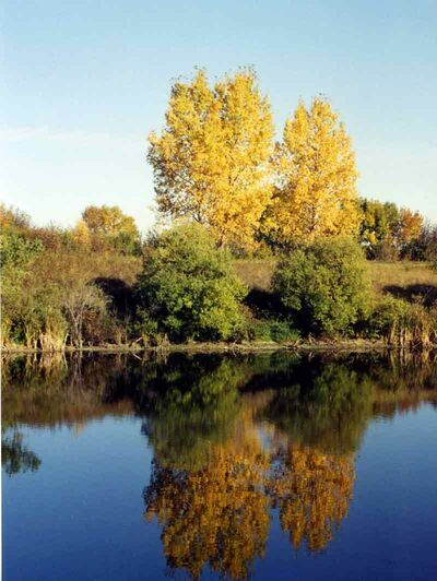 Autumn colours are reflected in Lake Irwin, southeast of Neepawa.