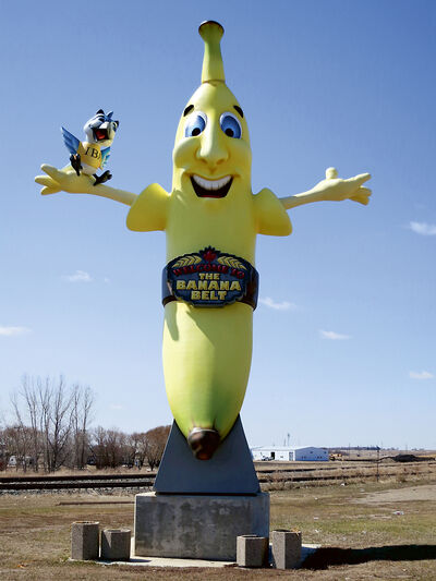 """Sunny the banana is a permanent, nine-metre-tall reminder that Melita is located in the heart of Manitoba's """"Banana Belt."""""""